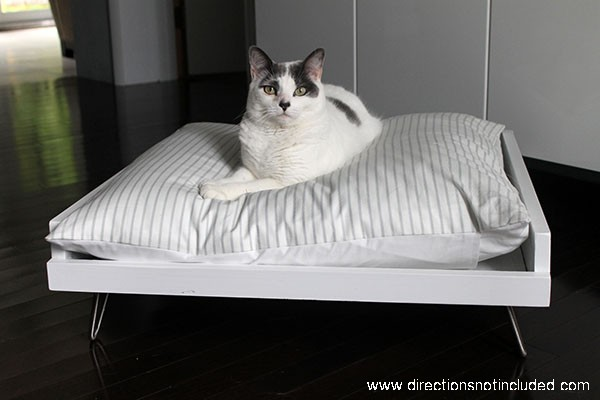 DIY MidCentury Pet Bed - Directions Not Included