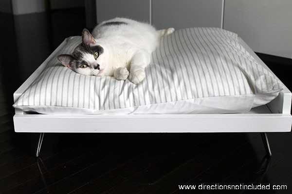 DIY_MidCentury_Pet_Bed6