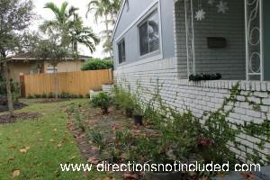 Florida_LandscapePart1_2